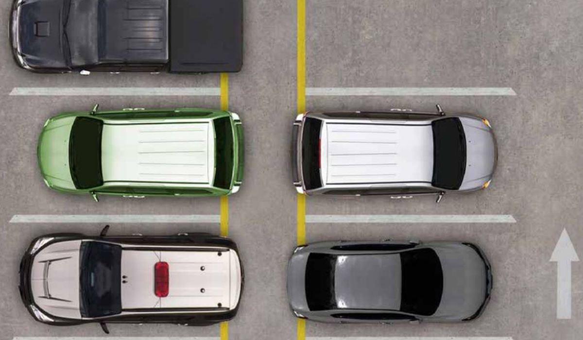 skat på biler
